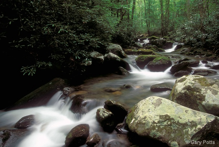 Roaring Fork April - ID: 6281599 © Gary W. Potts