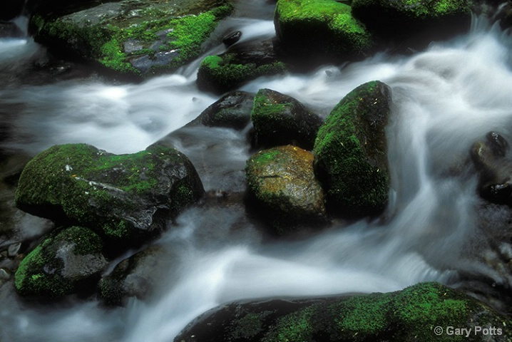Rushing Waters - ID: 6281601 © Gary W. Potts