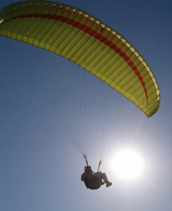 Wing Flier