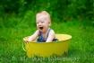 Happy little fell...