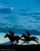Moonlight Race