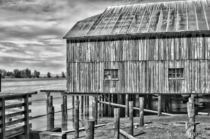 Cannery - ID: 6608677 © Liandra Barry