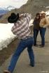 Photography Cowbo...