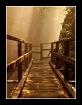 Path of a dreamer