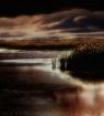 Moonlit Marsh & S...