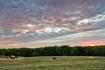 Sunset on the Ran...