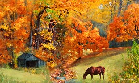 Autumn Perfection