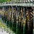 © Joseph T. Pilonero PhotoID# 7125673: Fishing Bridge