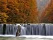 autumn rapsody