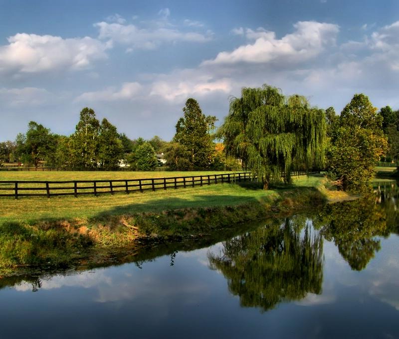 Lexington Reflections