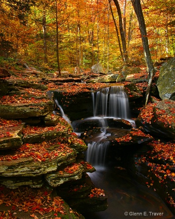 Fall at the Glen's