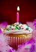 Happy Birthday Ka...