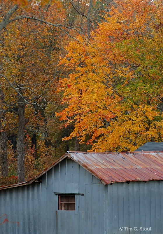 Galvanized by the Seasons