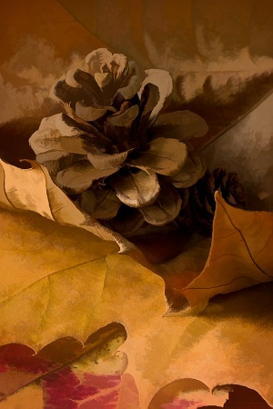 Pine Cone and Leaves