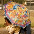© Mike Keppell PhotoID # 7464744: Discreet, Colombo