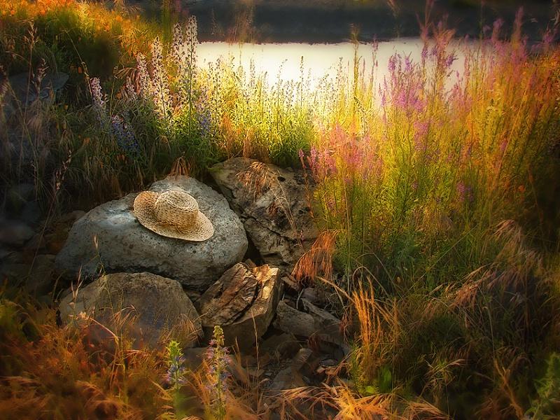 little oasis