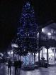 December Whistler...