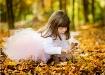 Leaf Fairy