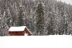 White Christmas 2...