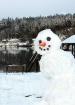 Curious Snowman