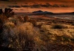 Tabasco Sunset