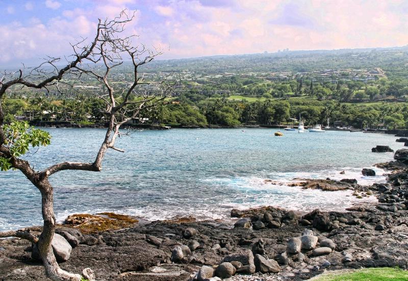~ Lava Rock Beach ~ - ID: 7747038 © Trudy L. Smuin