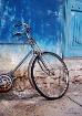 Ride of the Phoen...