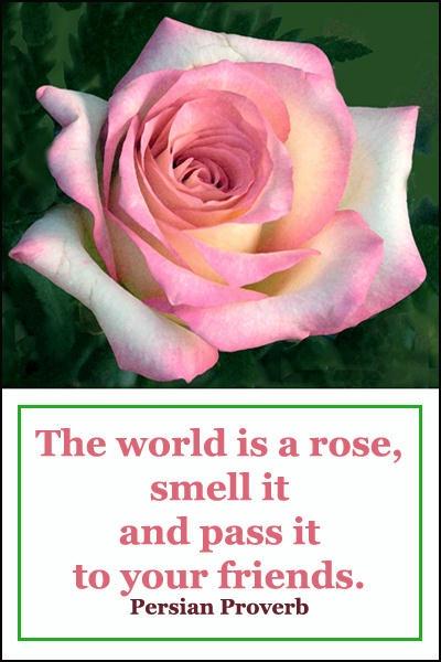 World is a Rose card - ID: 7815231 © Joseph T. Dick