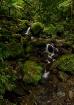 Waterfall at El Y...