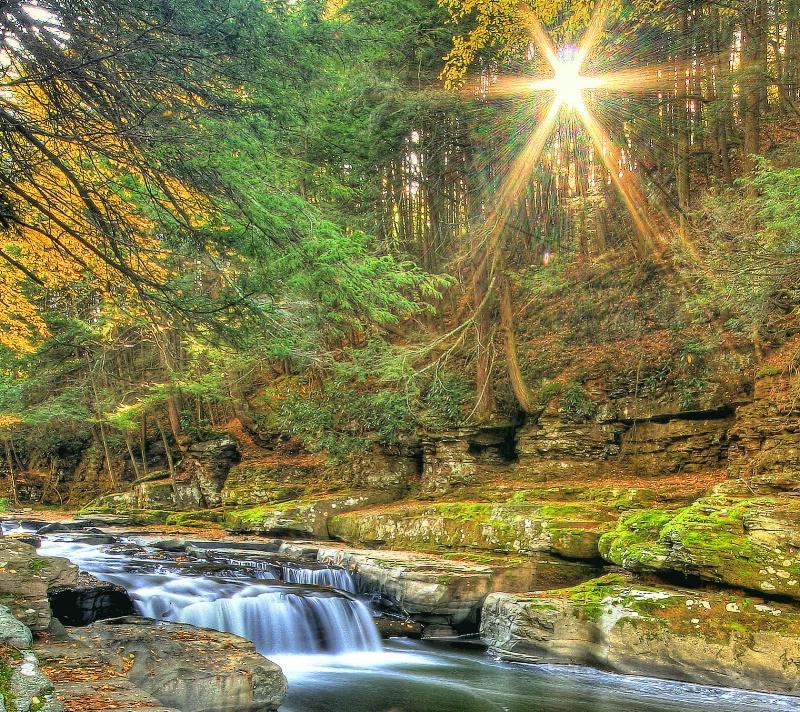 Morning on the Creek - ID: 7834376 © Joseph T. Pilonero