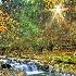 © Joseph T. Pilonero PhotoID# 7834376: Morning on the Creek