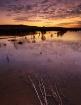 The last sunset I...