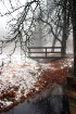 Footbridge in the...