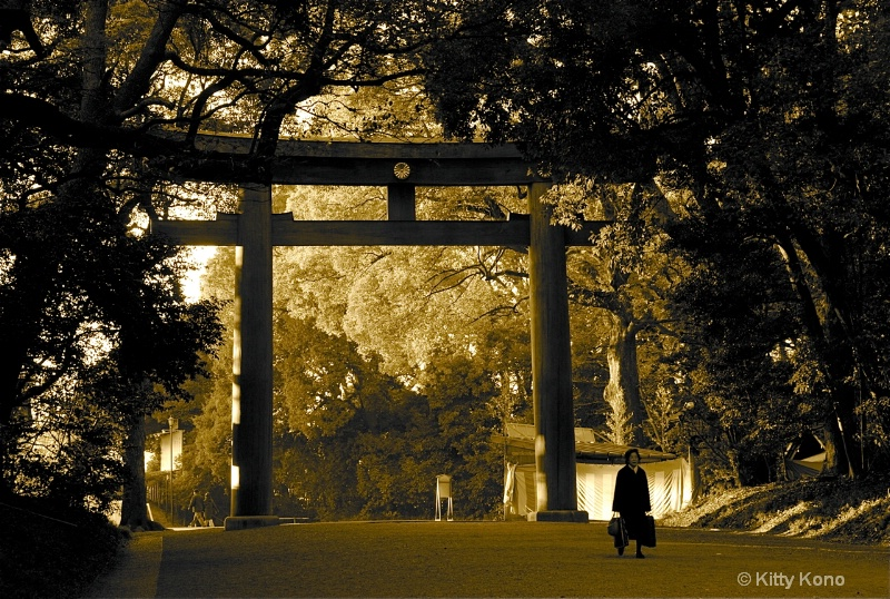 Entering Meiji Shrine - ID: 7904422 © Kitty R. Kono
