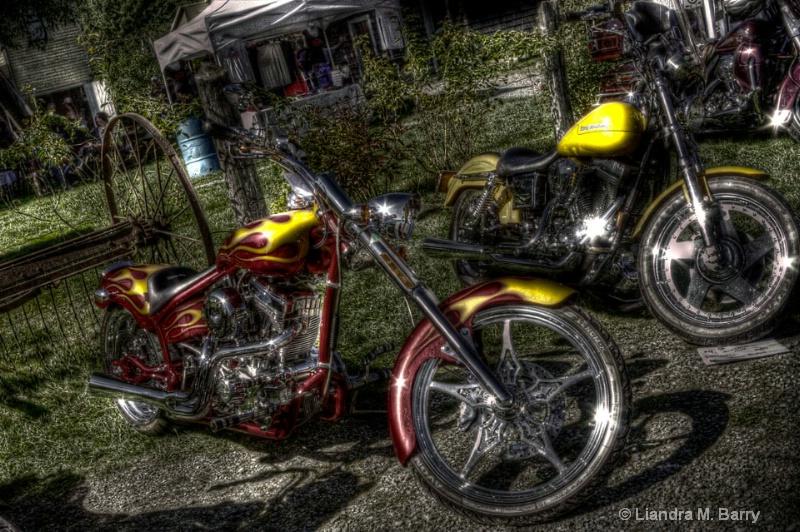Motorbike show - ID: 7940790 © Liandra Barry