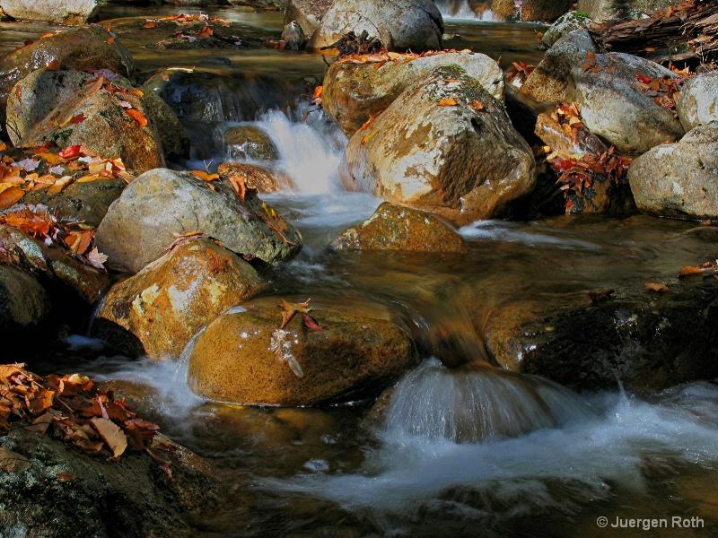 NE-008: Pemigewasset Wilderness Brook - ID: 7983975 © Juergen Roth