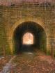 Moss Coverd Bridg...