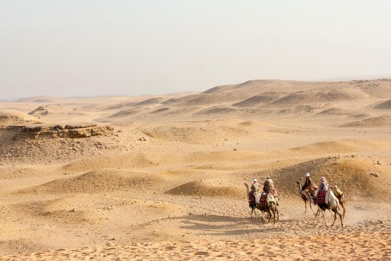 Camel Caravan - ID: 8068744 © James E. Nelson