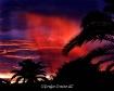 Arizona Morning R...