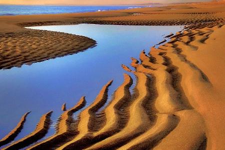 Sunrise Plum Island Beach