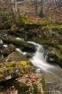 Chittenango Falls...