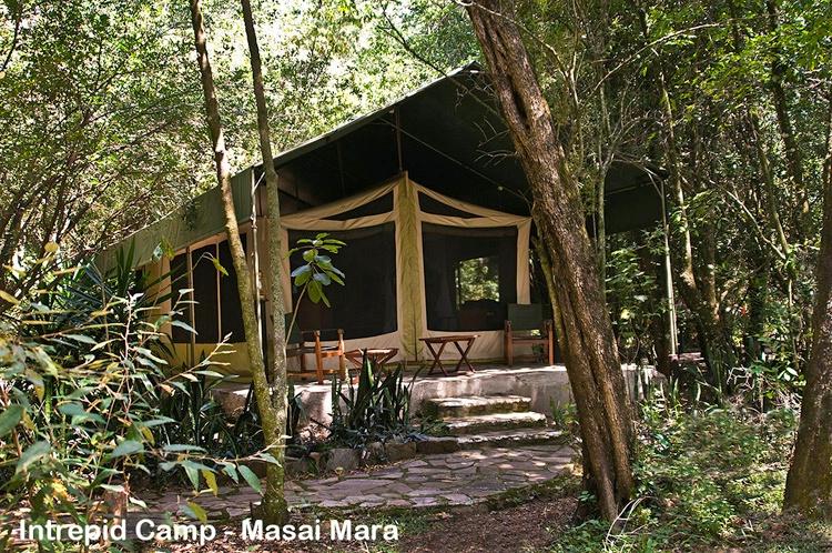 My Tent at Mara Intrepids Camp - ID: 8137468 © Larry J. Citra