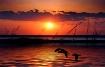 Sunset  Fort  Fis...