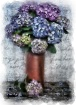 Antique Hydrangea...