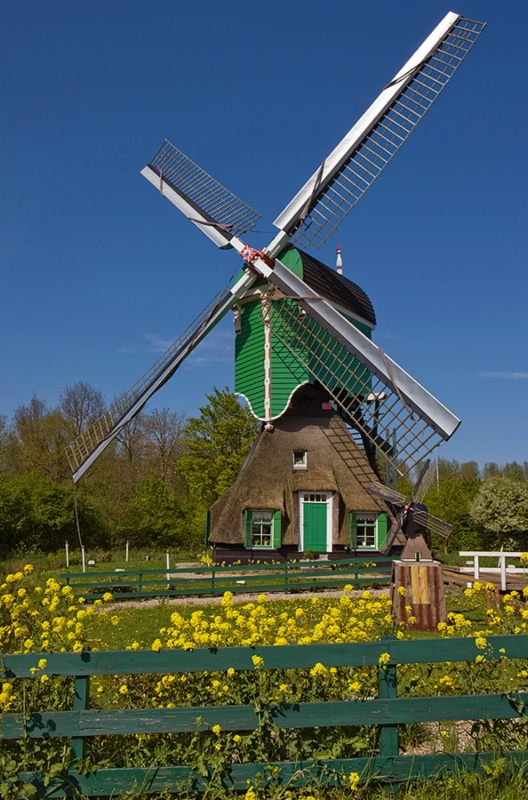 Windmill residence