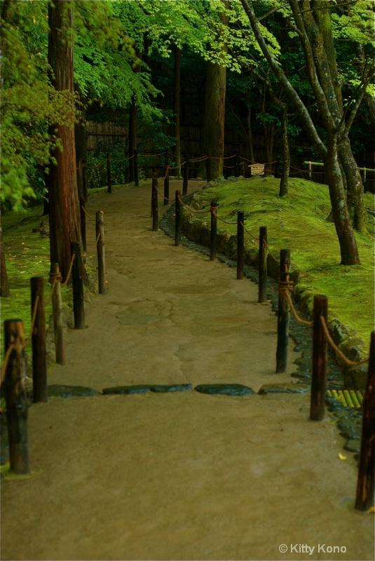 Moss Garden in Kyoto - ID: 8221699 © Kitty R. Kono