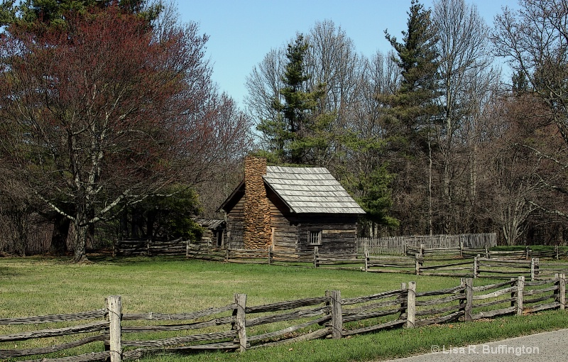 Puckett Cabin - ID: 8250733 © Lisa R. Buffington