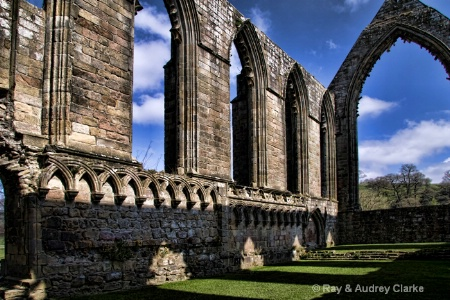 Patterns at Bolton Abbey