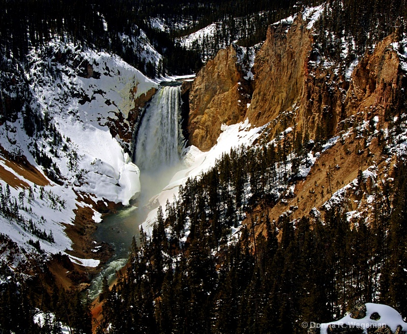 My Passion - Yellowstone National Park #3