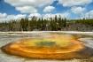 Chromatic Pool